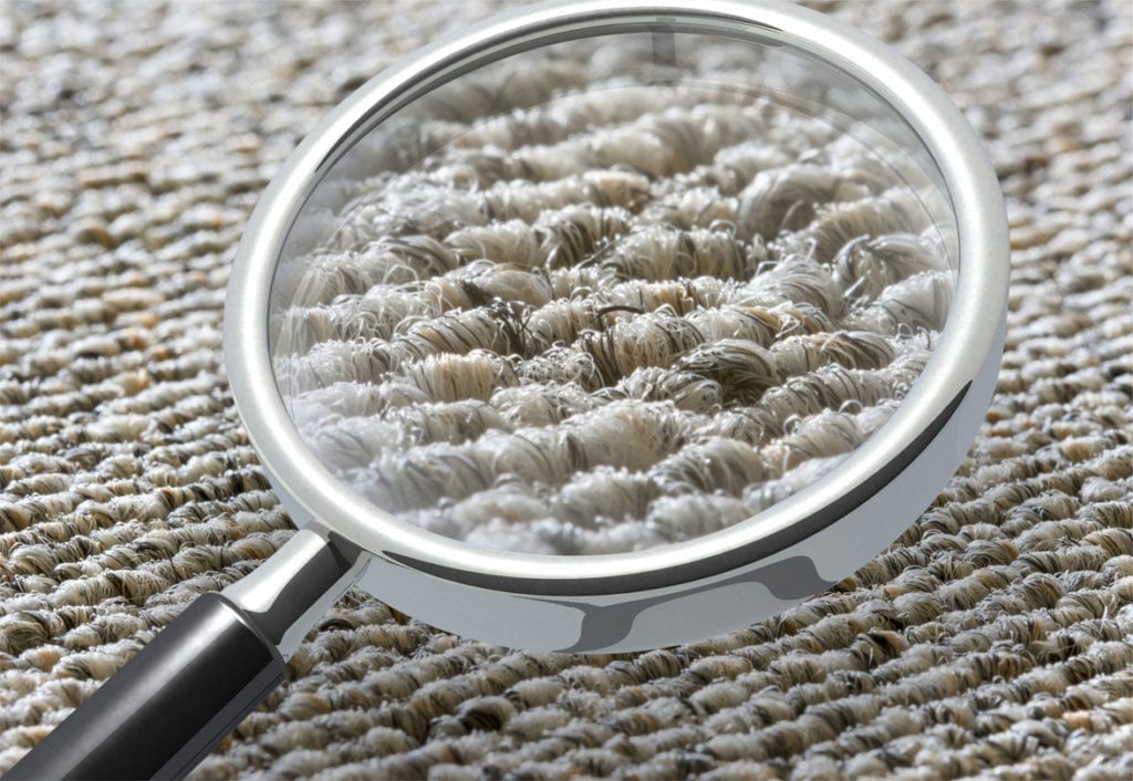 Everything You Need To Know About Dry Carpet Cleaning